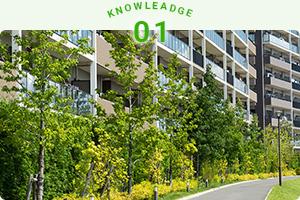 植栽管理の基礎知識