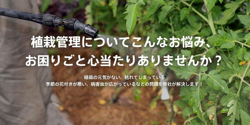 植栽管理についてこんなお悩み、お困りごと心当たりありませんか? 植栽の元気がない、枯れてしまっている季節の花付きが悪い、病害虫が広がっているなどの問題を弊社が解決します!