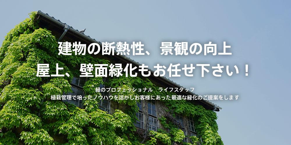 建物の断熱性、景観の向上 屋上、壁面緑化もお任せ下さい! 緑のプロフェッショナル ライフスタッフ 植栽管理で培ったノウハウを活かしお客様にあった最適な緑化のご提案をします